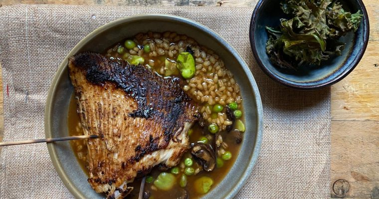 Barbecued skate with miso barley risotto